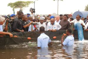 Former President Obasanjo, Gov. Amaechi and others Observing the Operation of the Buguma Fish Farm