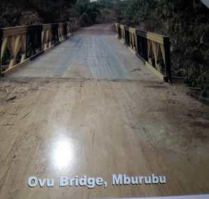 Bridge photo1